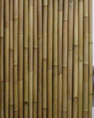Bamboo Rolled Screen