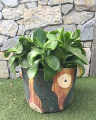Vintage Australiana Log Pot