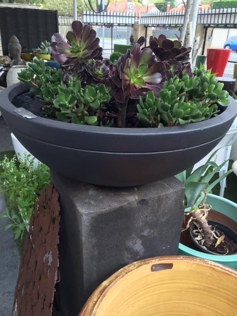 Hermes Bowl