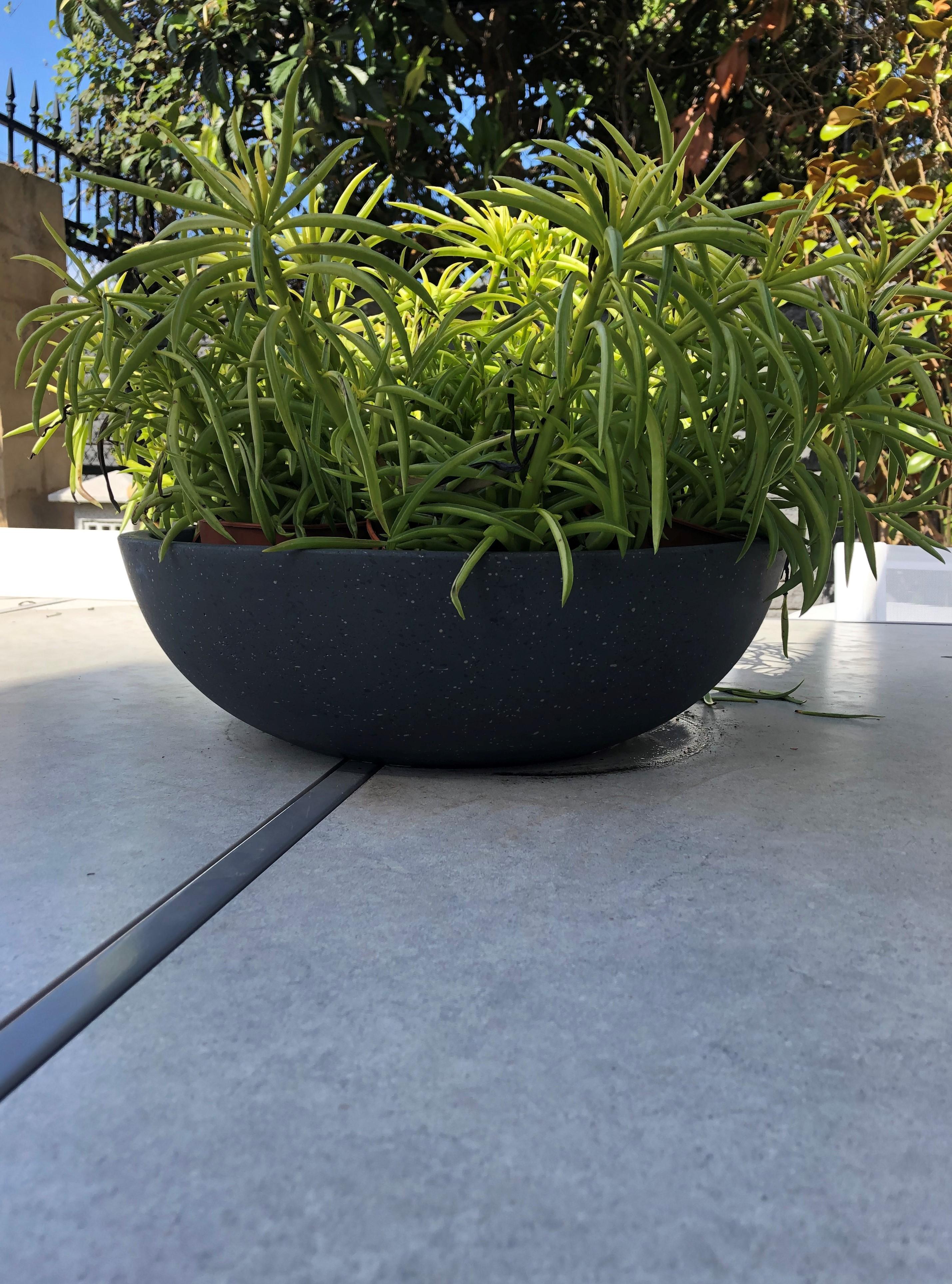 Lite Bowl Black