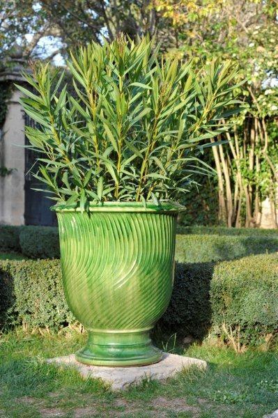 Les Vase Stries Vert Pot
